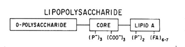 Lipopolysaccharide composition