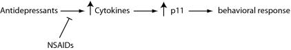 pnas SSRIs NSAIDS p11