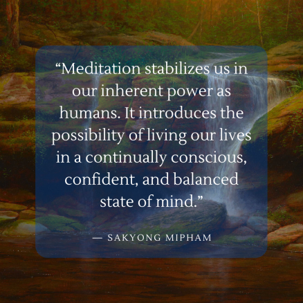 """""""Meditation stabilizes us in our inherent power as humans. It introduces the possibility of living our lives in a continually conscious, confident, and balanced state of mind."""" (2)"""